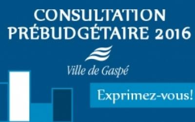 La Ville de Gaspé lance sa 2e consultation prébudgétaire