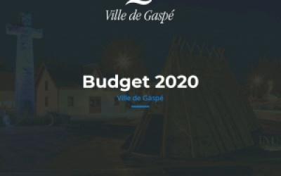 BUDGET 2020 : « DE NOUVELLES INITIATIVES ET UN BUDGET À L'IMAGE DES NOUVELLES  RESPONSABILITÉS DÉVOLUES AUX MUNICIPALITÉS »