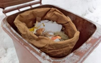 La Ville de Gaspé mettra en place la collecte du bac brun dès 2018!