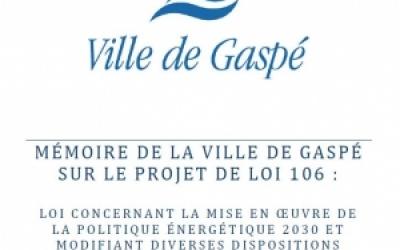 La Ville de Gaspé fait connaître ses attentes au gouvernement en commission parlementaire sur le projet de loi 106